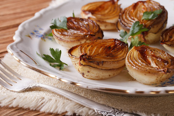 caramelized onions on a plate close-up. horizontal
