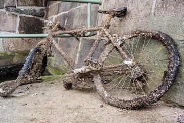 Altes Fahrrad Treibgut verrostet