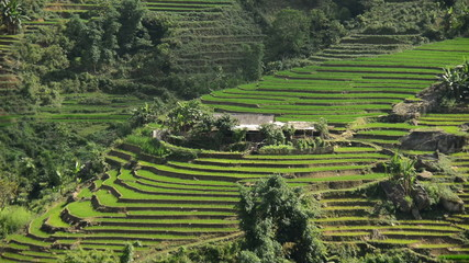 Time Lapse - Zoom Out of Scenic Rice Terraces in Sapa Northern Vietnam