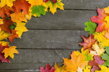 Beautifull Autumn leaves over wooden background with copy space