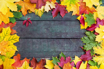 Beautifull colorful frame ofl autumn leaves over wooden backgrou
