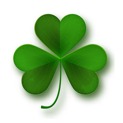 Saint Patricks Day shamrock leaf symbol isolated on white