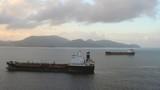 Cargo vessels on raid. Fort-de-France, Martinique poster