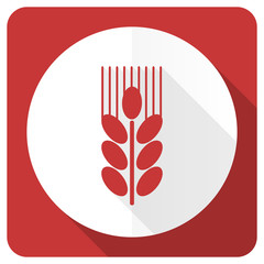 grain red flat icon agriculture sign