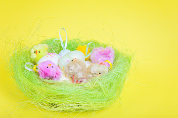 Easter eggs and chickens in nest