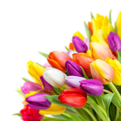Bunter Blumenstrauß mit Tulpen vor weißem Hintergrund