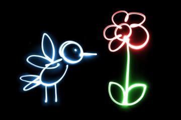 Lichtmalerei Vogel/Blume