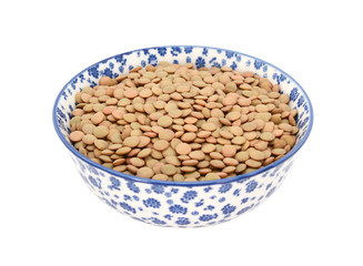 Green lentils in a blue and white china bowl