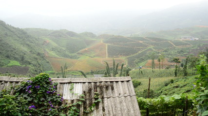 Zoom Out of Scenic Rice Terraces - Northern Mountains Sapa Vietnam