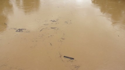 Garbage floating on the flood river,natural disasters,tilt up