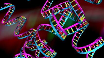 DNA Strands (Loop)