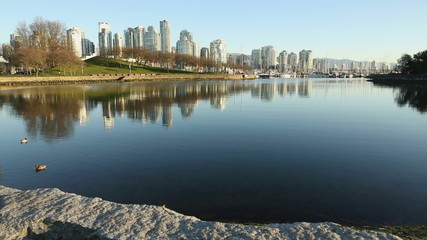 False Creek Morning Reflections