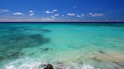 Barbados Beach Landscape