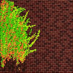 Ivy & Brick