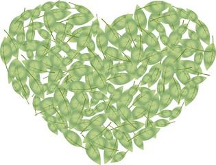 leef heart 2