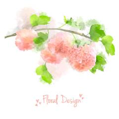 Vector Watercolor Flowers Hydrangea