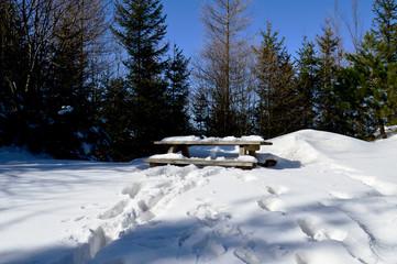 Bank-Tisch-Kombination im verschneiten Wald