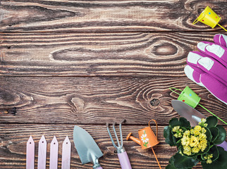 Gardening tools on a wooden table
