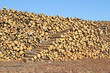 Stockage du bois - 78944612