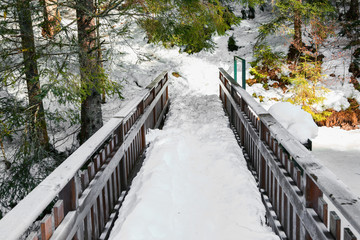 Small bridge with snow in vosges landsape