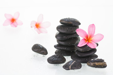 Plumeria flowers and black stones with water droplets close-up