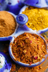 ras el hanout and curry powder