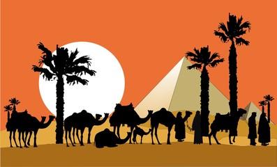 camel caravan background