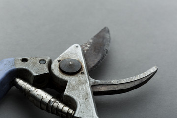 Pruner on grey