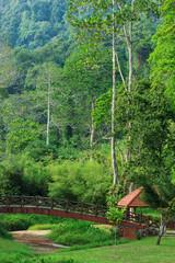 Park near the Botanical Garden in Georgetown, Penang