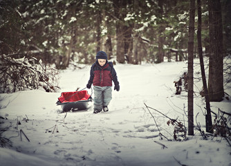 Young Boy Pulling a Sled through the Snow in a Forest