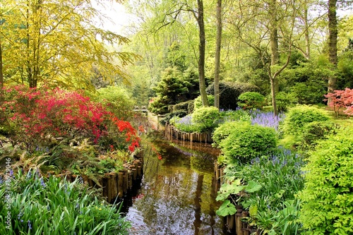 Foto op Aluminium Tuin Springtime at the Japanese Gardens of Keukenhof, Netherlands