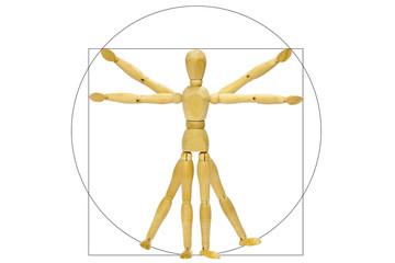 Vitruvio mannequin