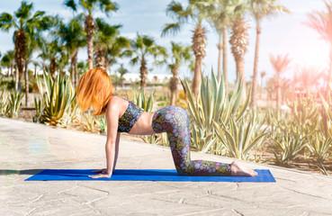 Woman doing yoga cat pose