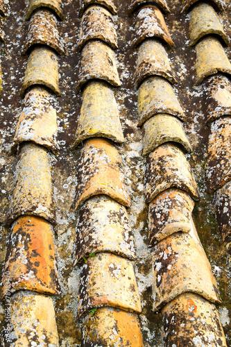 stary marokański dach w mieście