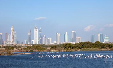 Dubai skyline with falmingos in foreground, UAE