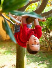Kid climbing on a tree
