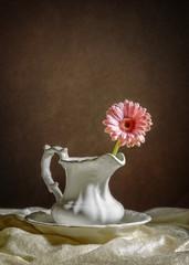 Single Gerbera Flower