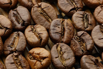 Roasted coffee beans macro shot with extended DOF, soft light