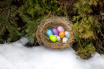 Closeup shot of painted Easter eggs hidden in nest at backyard