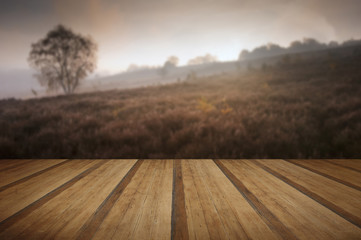 Foggy misty Autumn forest landscape at dawn with wooden planks f