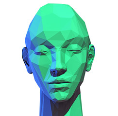 low poly  human head