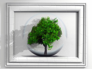 tree and frame