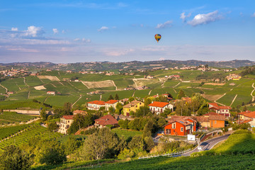 Small town and vineyards in Italy.