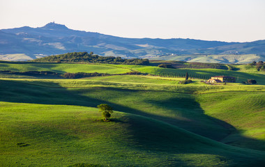 Beautiful summer landscape with wavy hills and a lodge, Tuscany,