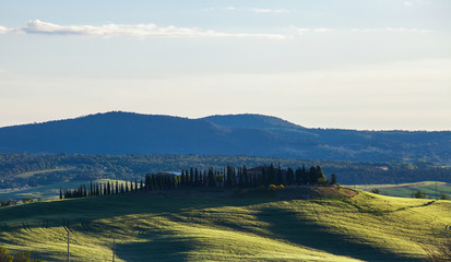 Beautiful summer landscape with the cypress avenue, Tuscany, Ita