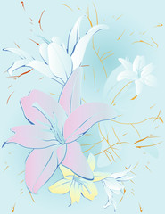 FLOWERS LILY BACKGROUND. BLUE