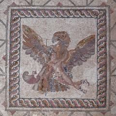 mosaïque , de la maison de Dyonisos à Paphos  (Chypre )