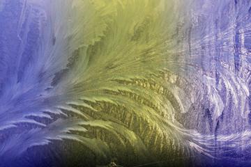 Winter frostwork on window glass