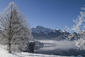 Ein Wintermorgen am Kochelsee