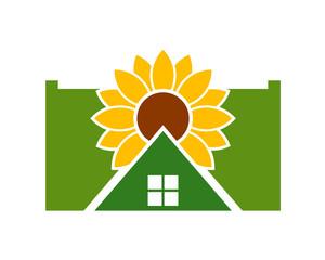 sunflower house2